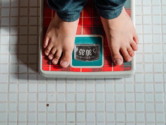 Ganadores de peso